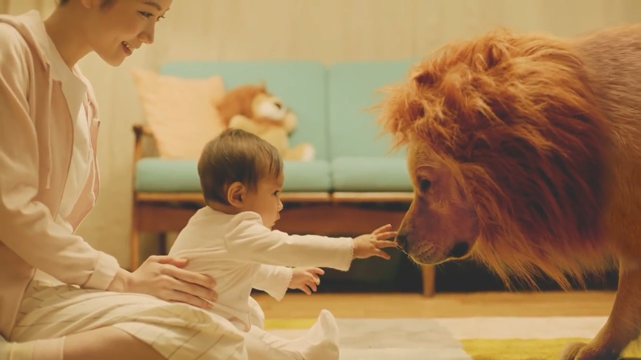 Amazon Prime Commercial Lion (Japan)