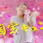 日清ペットフード「懐石zeppin」CM