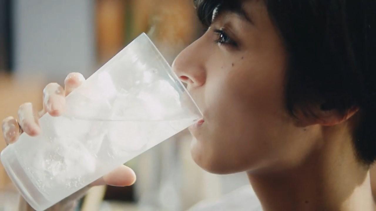 ウィルキンソン タンサン CM 「With Food」編 DEAN FUJIOKA シシド・カフカ