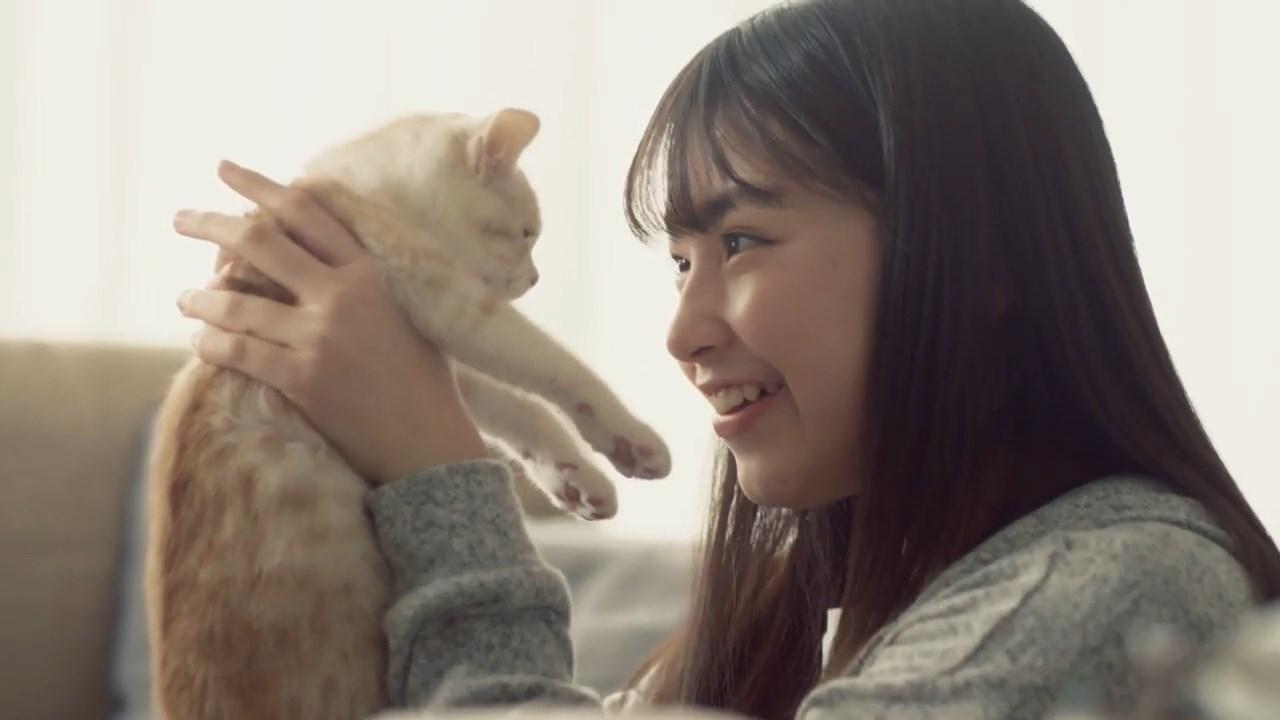 STNet 吉澤悠華 CM【夢見るライフライン(子猫の気持ち)】篇
