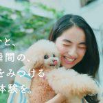 プレイド KARTE そのひと、その瞬間の、笑顔を見つける 顧客体験を。仁村紗和