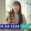 SBIいきいき少短 ペット保険 奈緒 CM