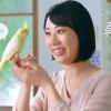 武内おと 花王 ビオレ 朝ジュレ WEB動画 乾燥インコ編
