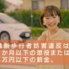 武田玲奈 福島県交通安全啓発CM(誰も止まってくれない篇)